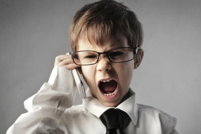 """积极的卖家:如何让他们在通常会说""""不""""的时候说""""是"""""""